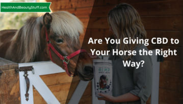 Are You Giving CBD to Your Horse the Right Way?