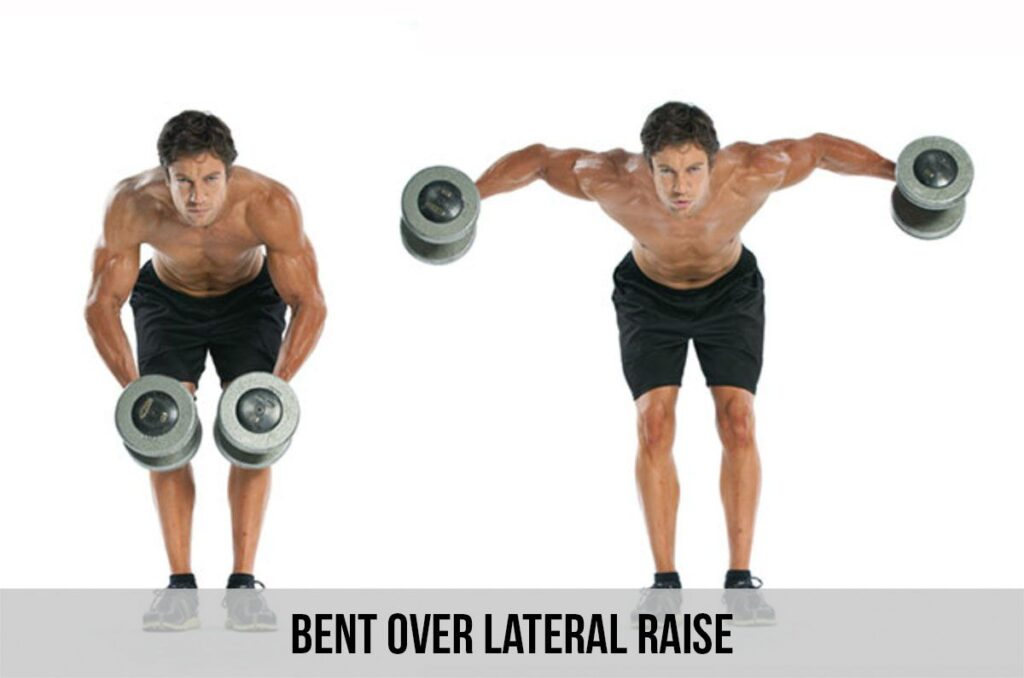Bent Over Lateral Raises for beginners