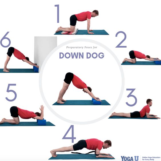 Downward Facing Dog - Adho Mukha Svanasana yoga pose
