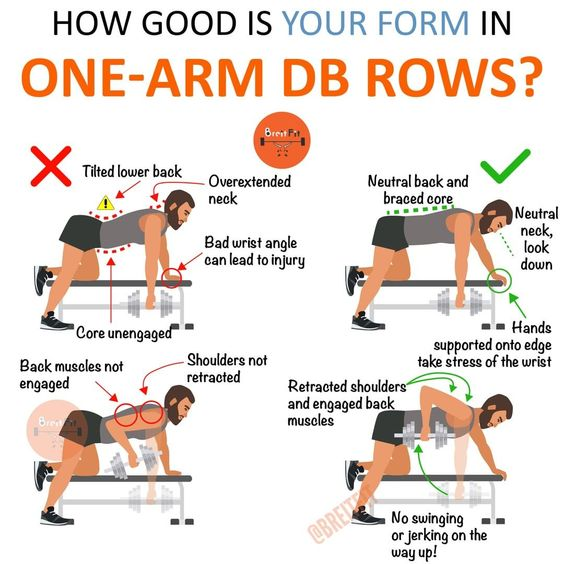 Dumbbell Row for beginners