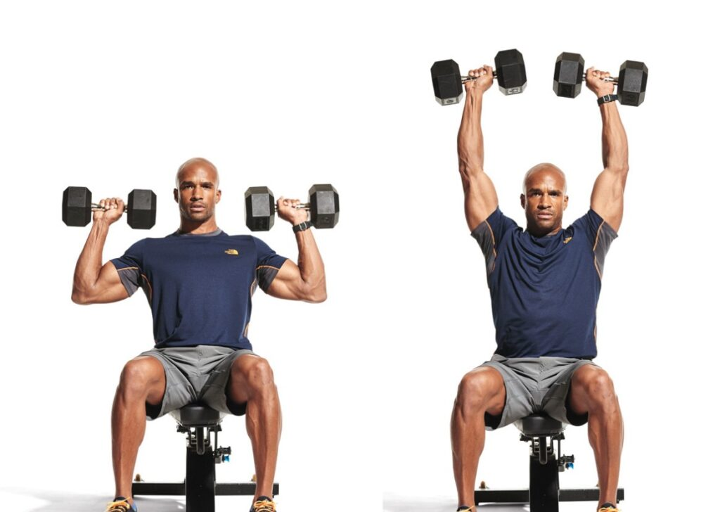 Seated Dumbbell Press for beginners