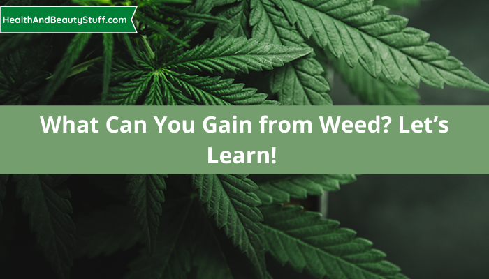 What Can You Gain from Weed? Let's Learn!