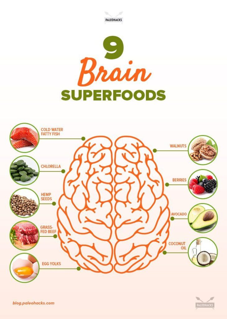 healthy brain diet