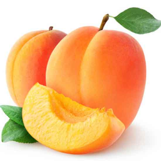 apricot for lungs