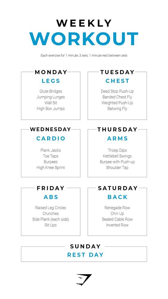 weekly workout gym routine